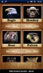 Wild Animal Ringtones screenshot 1/3