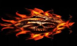 Fire Skull Snake Live Wallpaper screenshot 2/3