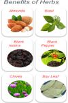 Benefits of Herbs screenshot 1/3