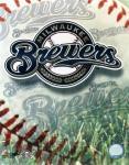 Milwaukee Brewers Fan screenshot 4/4
