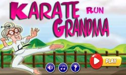 Karate Run Grandma screenshot 1/4