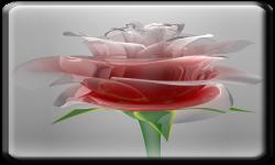 Love Rose Live Wallpaper HD screenshot 2/3