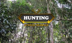 Hunting: Jungle animals screenshot 1/6