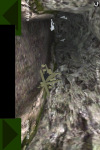 Copter Survival screenshot 5/5