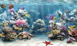 Galaxy Live Aquarium Wallpaper screenshot 5/6
