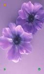Flowers HD Wallpapers Free screenshot 1/6