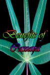 Benefits of Cassava screenshot 1/4