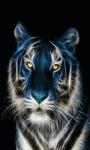 Lighting Tiger Live Wallpaper screenshot 3/3
