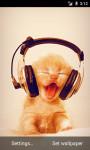 Kitty Music LWP screenshot 2/3