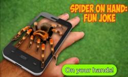 Scary Spider AR - Prank joke screenshot 2/3