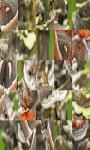 Butterflies Jigsaw Puzzle screenshot 1/4