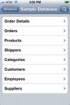 DataGlass Access screenshot 1/1