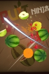 Fruit Ninja HD screenshot 1/1
