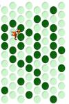 Trap  the  tiger screenshot 2/2