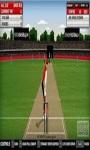 Free Cricket 3D screenshot 1/1