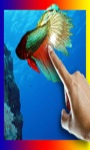 Betta Fish in your phone LWP screenshot 2/3