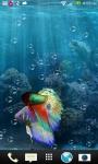Betta Fish in your phone LWP screenshot 3/3