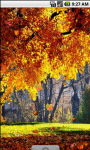 Autumn Forest Cool Live Wallpaper screenshot 1/4