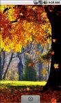 Autumn Forest Cool Live Wallpaper screenshot 3/4