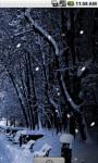 Winter Park Live Wallpaper screenshot 3/4