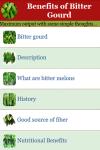 Benefits of Bitter Gourd  screenshot 2/3