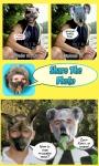 Look Like Puppy or Koala screenshot 6/6