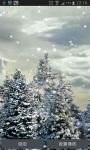 SnowFall screenshot 1/1