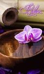 Relex Flower Live Wallpaper screenshot 1/3