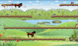 Horse Run Casual Action game free screenshot 2/4