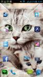 Cats Images Photos screenshot 6/6