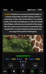 Tap Puzzle Animals screenshot 5/5