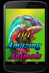 101 Amazing Animals screenshot 1/3