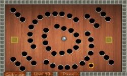 Wooden Labyrinth screenshot 3/5