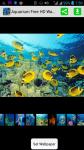 Free Download Aquarium HD Wallpaper screenshot 1/4