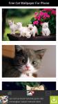 Free Cat Wallpaper For Phone screenshot 2/6