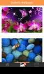 butterfly beautifull wallpaper screenshot 5/6