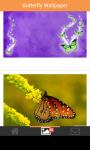 butterfly beautifull wallpaper screenshot 6/6