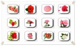 Camellia Flowers Onet Classic Game screenshot 3/3