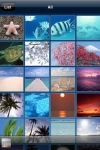 Media Link Player Lite screenshot 1/1