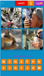 4 Pics 1 Word Game screenshot 5/6