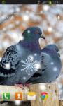 Birds Winter Live Wallpaper screenshot 2/2