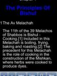 The Laws Of Cooking On Shabbos screenshot 1/1