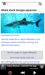 Zoo : Red Sea Wild Animals screenshot 4/6