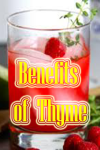 Benefits of Thyme screenshot 1/3