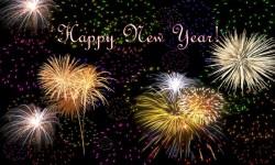 Happy New Year 2015 Wishes screenshot 1/3