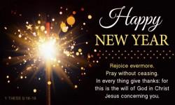Happy New Year 2015 Wishes screenshot 3/3