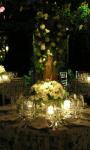Wedding Ideas HD Gallery screenshot 2/6