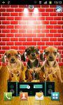 Dancing Dogs Live Wallpaper screenshot 1/4