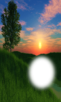 pic of Green hill photo frame screenshot 3/4