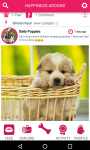 PetSutra - Pet Lovers App screenshot 1/3
